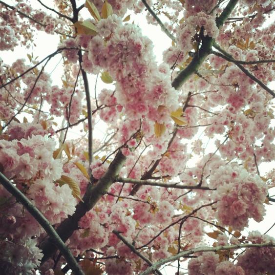 La Primavera en Londres.